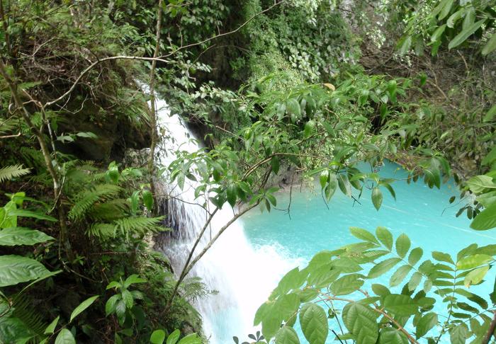 Kawasan Falls in Kawasan Falls, Cebu and Bohol