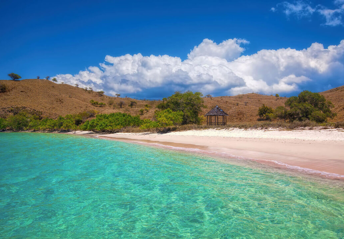 Pink Beach in Pink Beach, Lombok