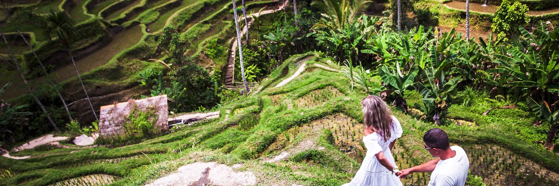 Ubud Small Group Tour: Monkey Forest, Tegalalang Rice Terraces and more – Full Day gallery