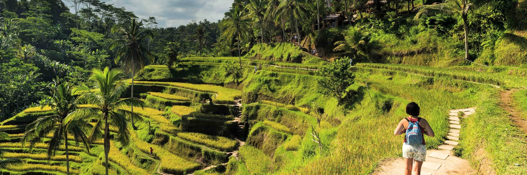 Kintamani Small Group Tour: Tegalalang Rice Terraces, Goa Gajah Temple and more – Full Day gallery