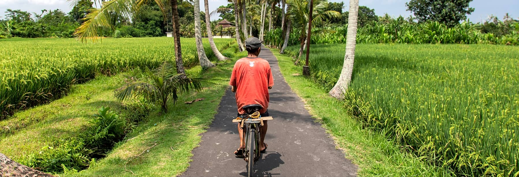 Ubud Nature & Village Bike Tour (Morning / Afternoon) – Half Day gallery