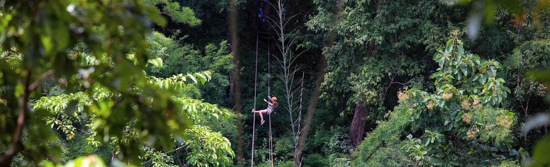 10% OFF Zipline Adventures at Jungle Flight Chiang Mai — E-ticket  gallery