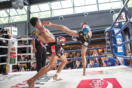Ko Samui Muay Thai Training - Book Now   TripGuru