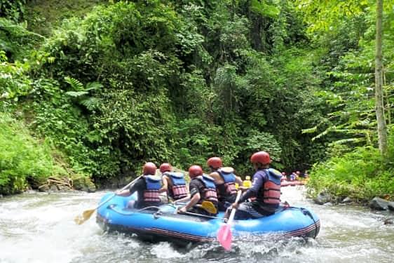 White Water Rafting On Ayung River Half Day Book Now Tripguru