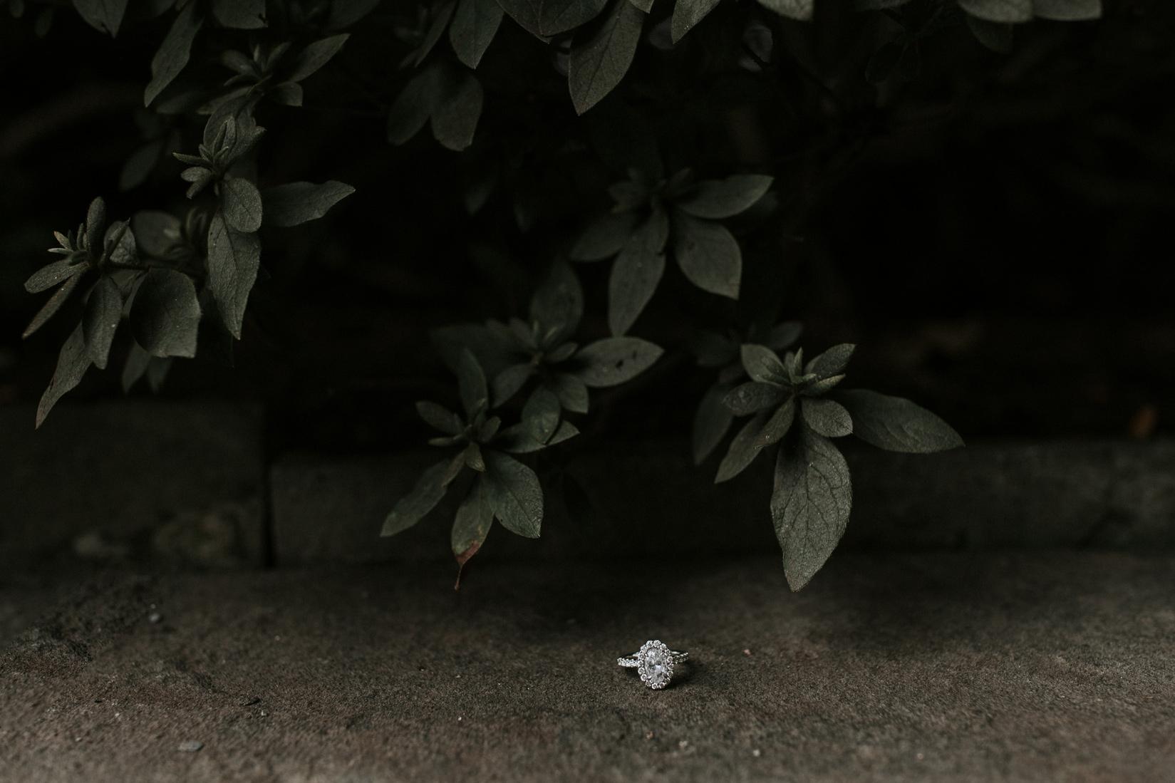 An image from MATT + LOGAN gallery