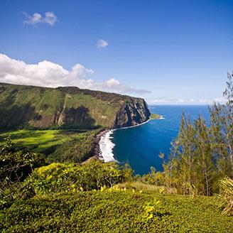 Hawaiian Coastal View