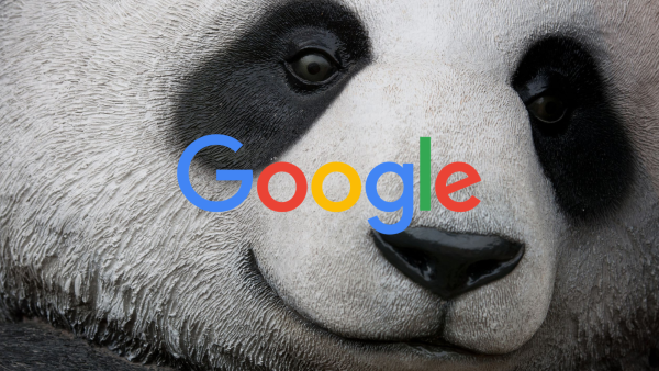 Google Panda Update Continuing