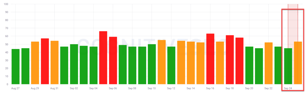 CognitiveSEO SIGNALS 24th of September 2019.