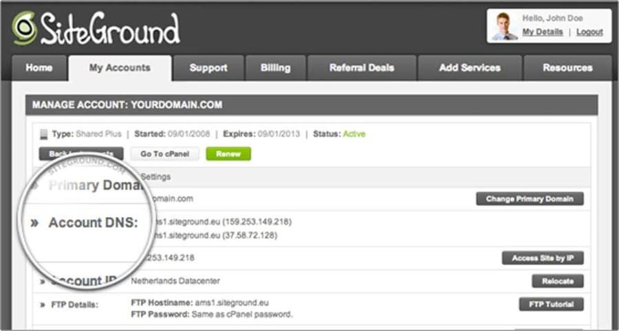 Make a note of your account DNS settings