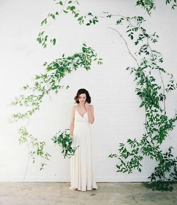 Organic: Backdrop đơn giản với lá xanh