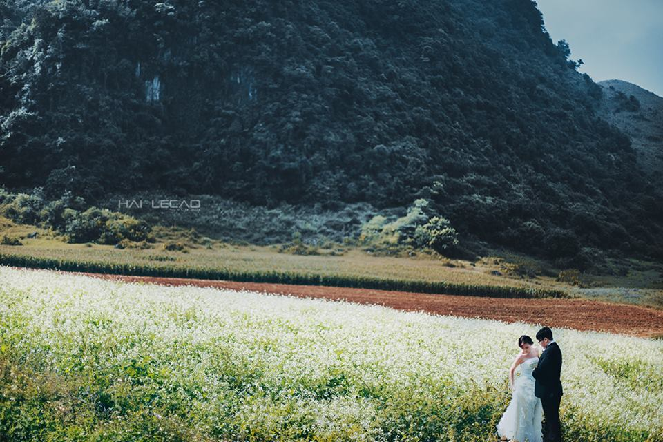 Cao nguyên Mộc Châu, Sơn La