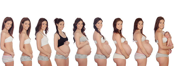 A woman in different stages of pregnancy and after, step by step