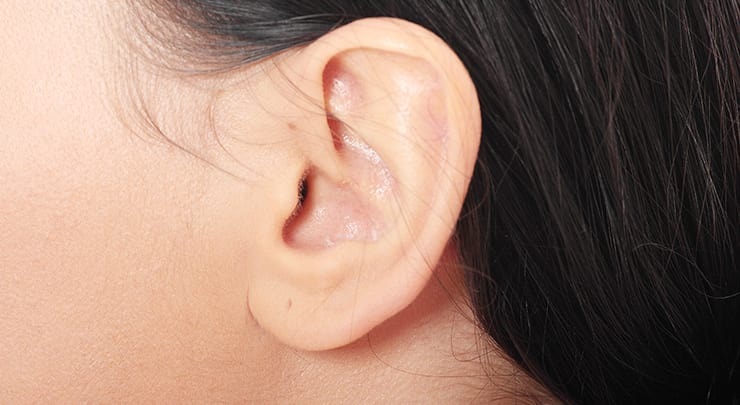 Woman's beautiful ear.