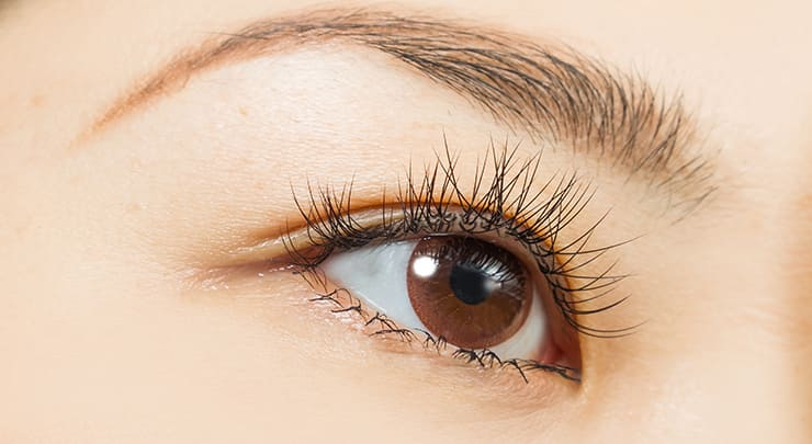 Close up of Asian woman's brown eye with double eyelid.