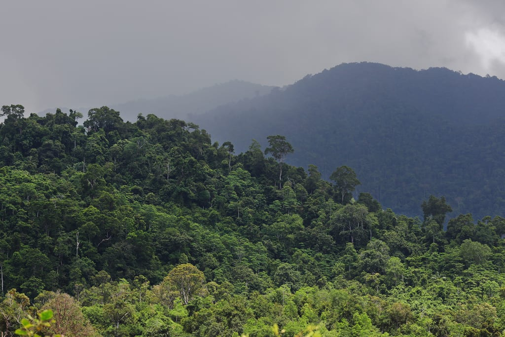 Indonesia eases development of geothermal in conservation areas