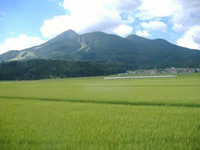 Japanese consortium looking at 270 MW geothermal development in Fukushima