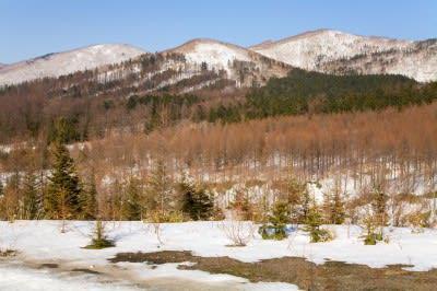 Paper firm exploring geothermal development in Hokkaido, Japan
