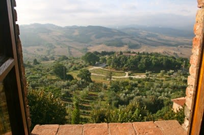 Enel Green Power starts 17 MW Rancia 2 plant in Tuscany