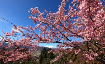 Japan to fund $19 million geothermal R&D program starting 2013