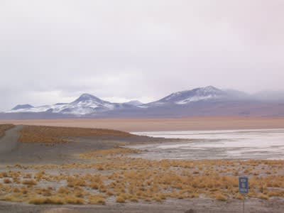 Update on the Laguna Colorada geothermal project in Bolivia