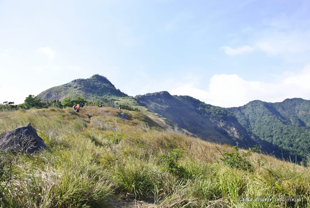 Basic Energy Corp. withdraws from two geothermal contracts in the Philippines