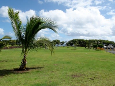 Office of Hawaiian Affairs invests in geothermal consortium