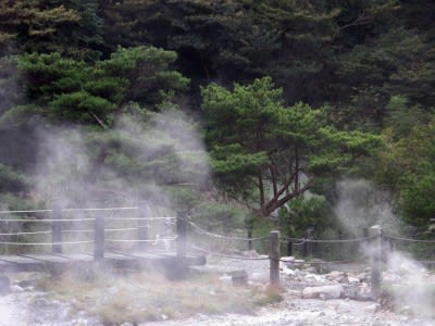 Kyushu Electric to double geothermal power generation by 2030