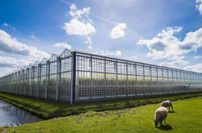 New partnership to optimise entire sustainable geothermal heat supply chain, Netherlands