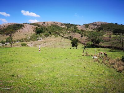 Strong interest by drilling firms in contract for Corbetti geothermal project, Ethiopia