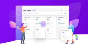WP Project Manager Pro 2.5.3 - WordPress Project Management Plugin