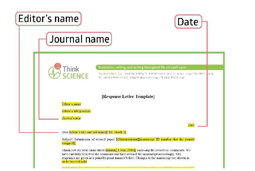 査読者に対する回答レターの効果的な書き方:ヒントとテンプレート