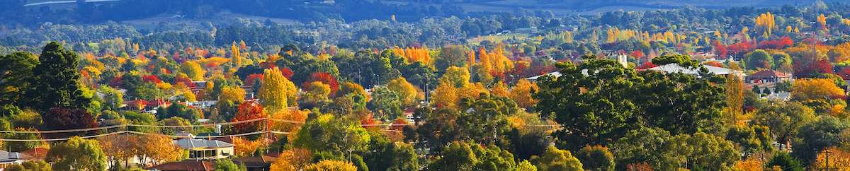 orange australia autumn