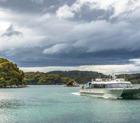 Stewart Island Return
