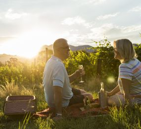 Perfect Picnic Spots in New Zealand