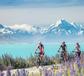 Best Cycle Trail Locations In New Zealand