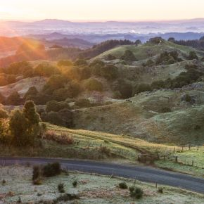 waitomo-landscapes