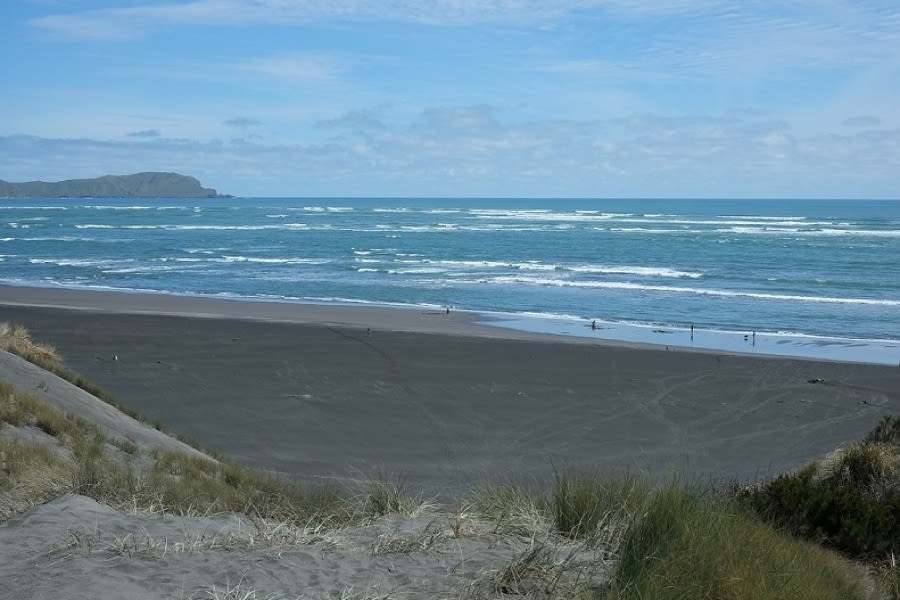 Beautiful North Island Beaches