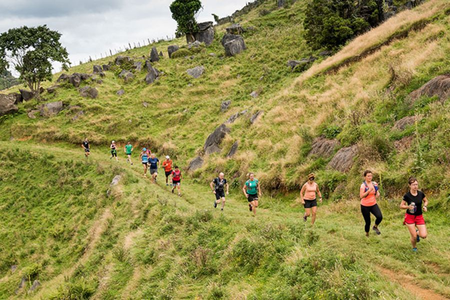 Trail Run Course Information