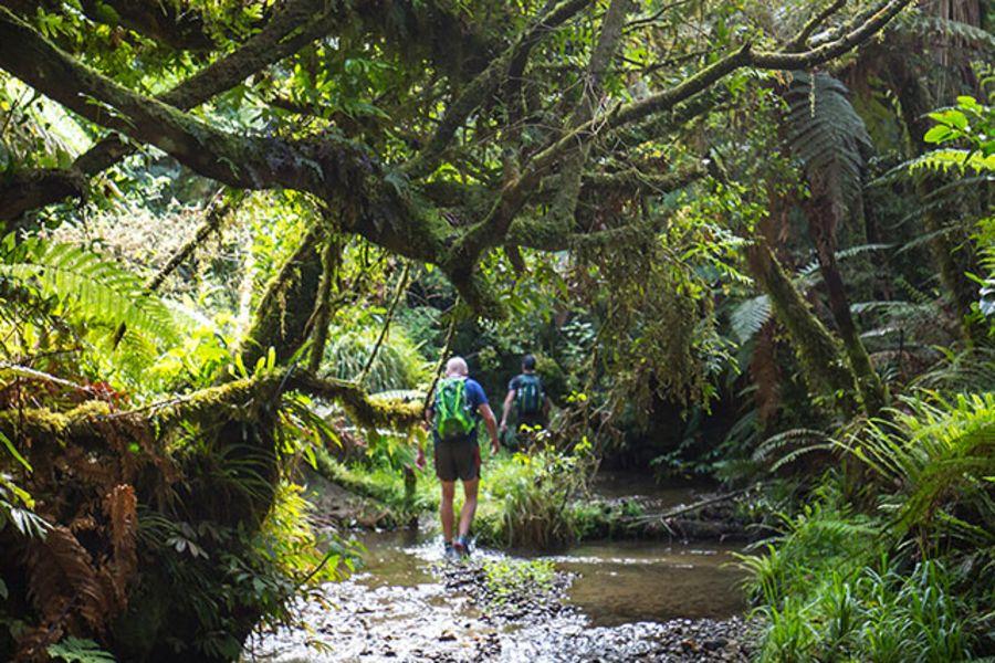 Trail Run Stakeholders
