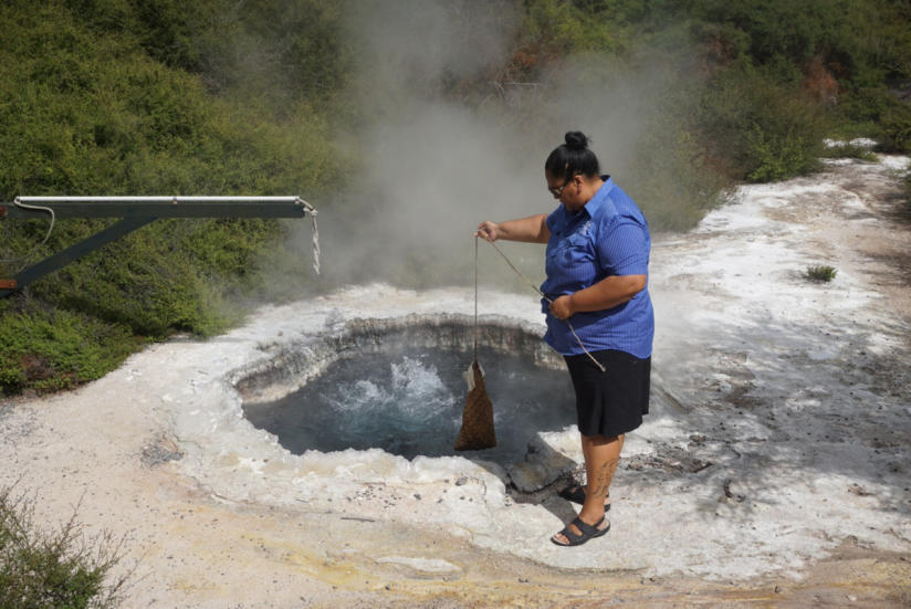 te puia cooking an egg in the geothermal hot pool