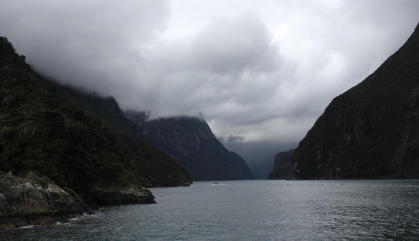 milford sound with kiwi experience