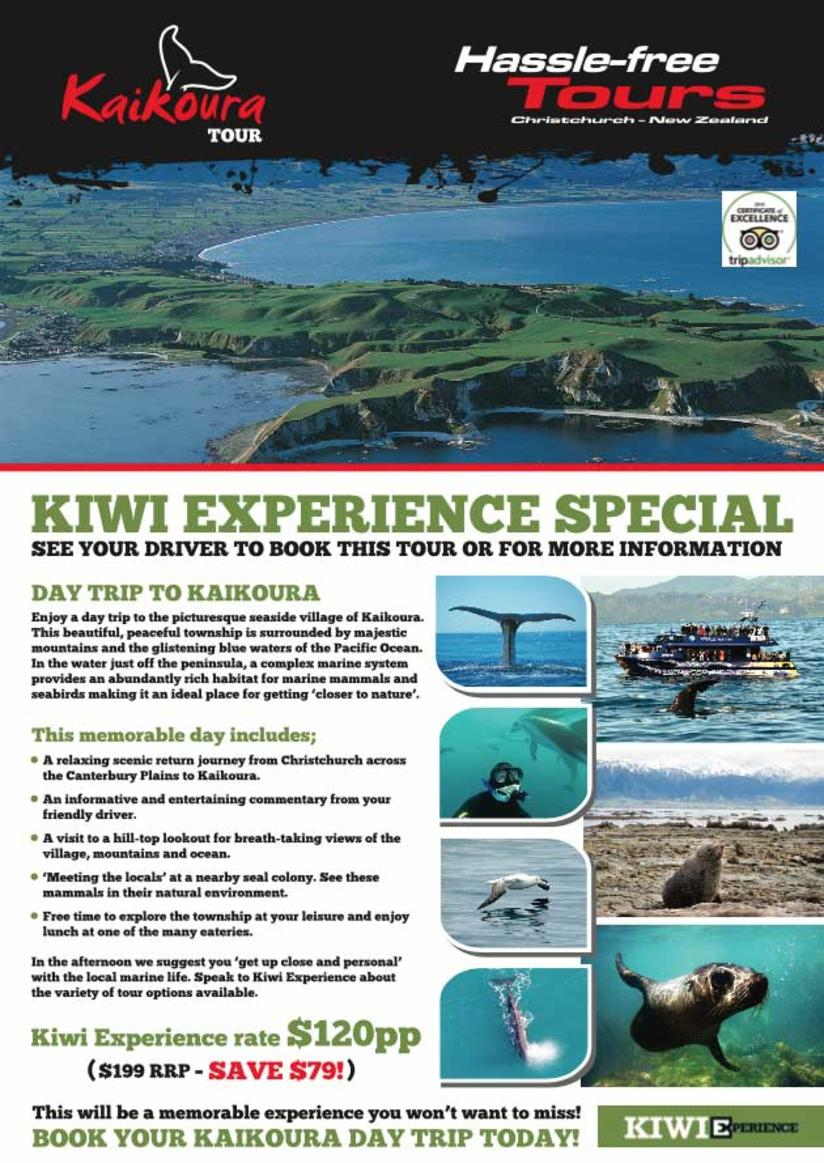 KAIKOURA DAY TRIPS NOW AVAILABLE!