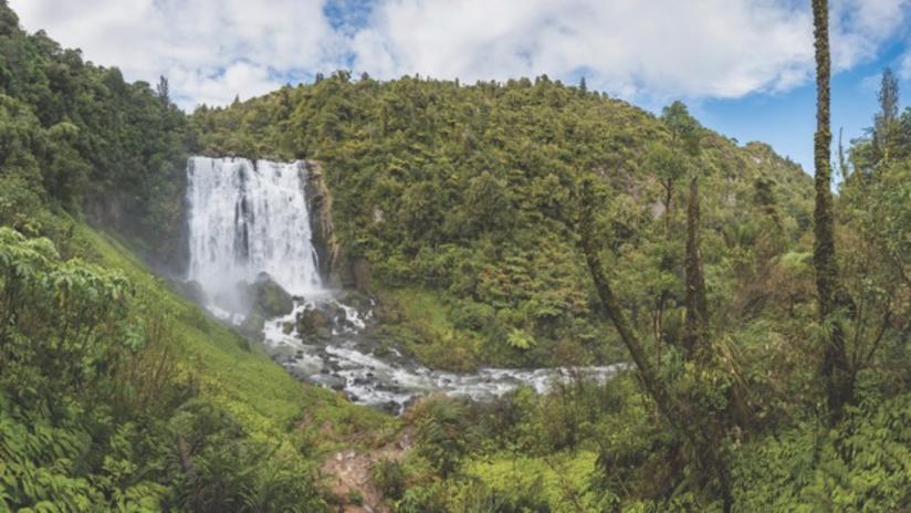 Marokopa Falls Walk
