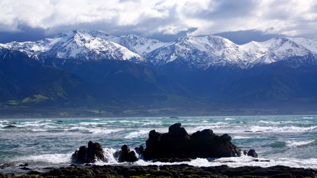 Kaikoura Kiwi Experience New Zealand Flexible Bus Tours