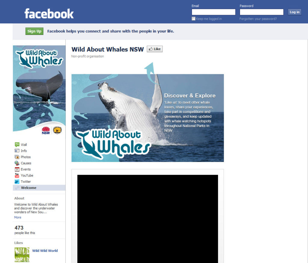 Use existing media hype to build your brand – use a whale as your billboard!