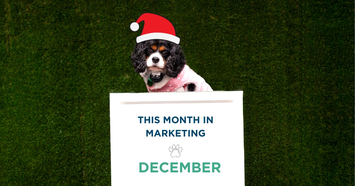 This Month in Marketing: December 2019
