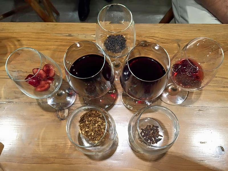 Nashik Wine Tour Image