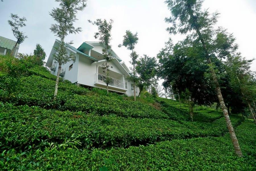 Rivulet Resort Image