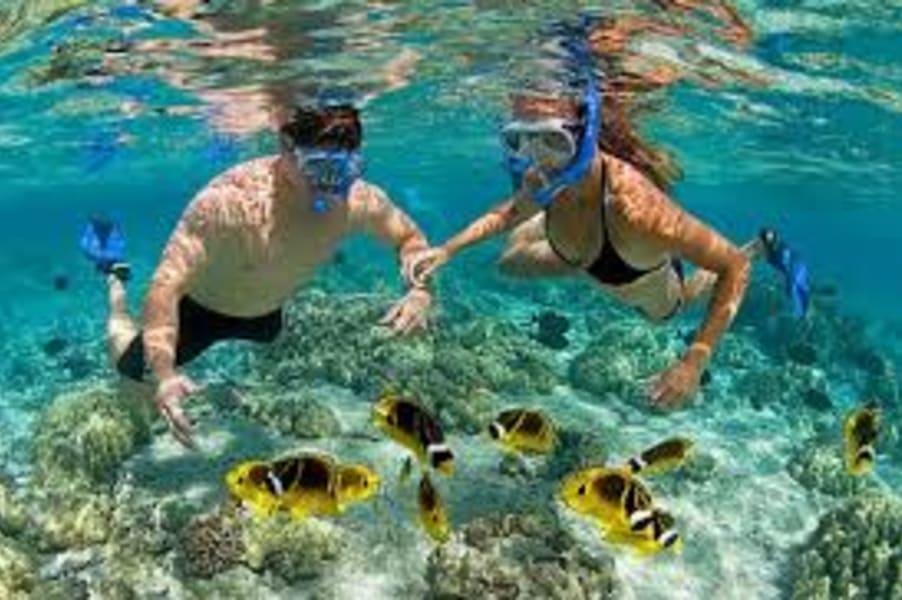 Snorkeling In South Kuta, Bali Image
