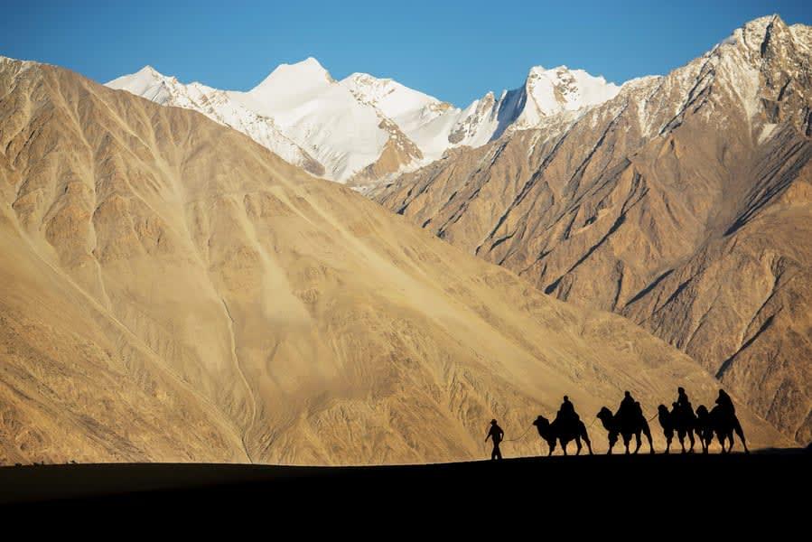 Ladakh Honeymoon Package Image